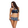Dreamgirl Teacher's Pet Schoolgirl Costume front